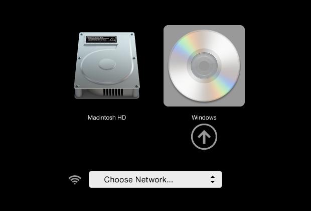 wiki/src/install/inc/screenshots/mac_startup_dvd.png